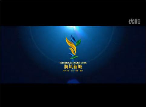 腾凤新城-世纪北苑-视频看房