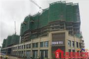 今日耒阳这里最热!龙腾·绿城营销中心盛大开放