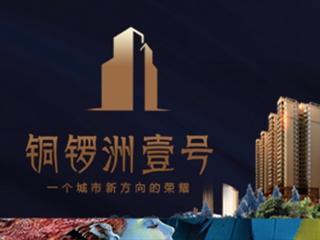 耒阳市江东置业有限公司