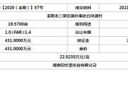 耒阳网挂【2020(耒阳)】57号土地拍卖结果公示